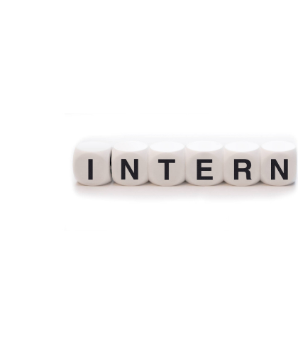 Interns Overview Opinions Experiences